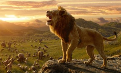 lion king movie hd pictures